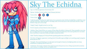 Reference- Sky The Echidna by Sky-The-Echidna