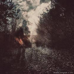 Ghostlines IV by BecherArt
