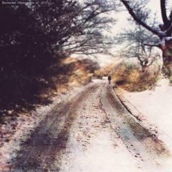 Say Goodbye IX by BecherArt