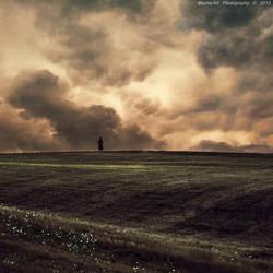 Say Goodbye XI by BecherArt