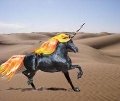Desert Flame by moondragonwings