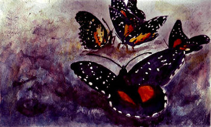 Butterflies on the Rocks by Mysticalpchan