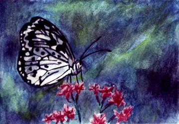Sitting Elegant: Butterfly by Mysticalpchan