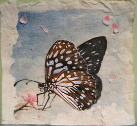 Watercolor Butterfly Collage by Mysticalpchan