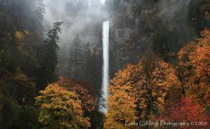 Multnomah Falls comes alive by La-Vita-a-Bella