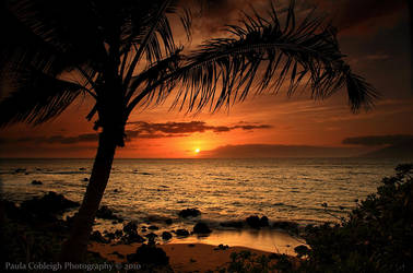 Secluded Sunset by La-Vita-a-Bella