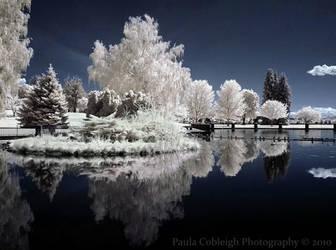 Time Stands Still - Infrared by La-Vita-a-Bella