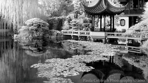 Infrared Chinese Garden by La-Vita-a-Bella