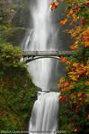 Waterfall - Multnomah Falls 'n Fall Leaves by La-Vita-a-Bella