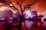 Frozen Inferno by La-Vita-a-Bella