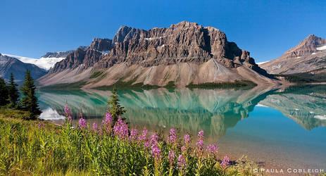 Bow Lake by La-Vita-a-Bella