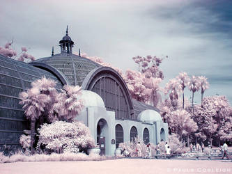 Infrared Botanical Garden by La-Vita-a-Bella