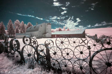 Dahmen Barn / Wagon Wheel Fence - Infrared by La-Vita-a-Bella