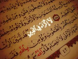 Laa Ikraaha fid-deen by Nayzak