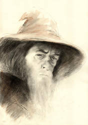 Gandalf by Acalewia