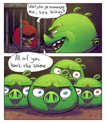 Angry Birds Toons : All the Same by MemQ4