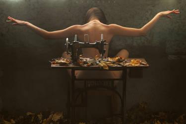 Fly Like A Phoenix by ArtofdanPhotography