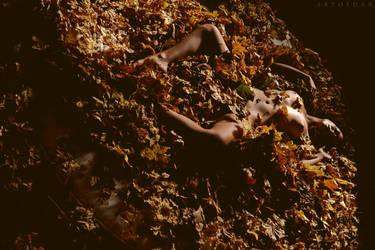 Autumn Planet by ArtofdanPhotography
