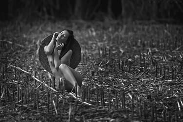 Whispering Field by ArtofdanPhotography