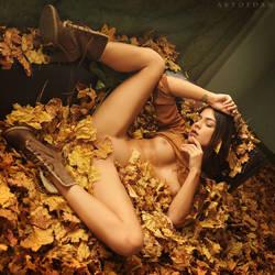My Art Of Autumn by ArtofdanPhotography