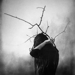 Neverbloom by Philomena-Famulok