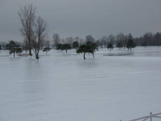 Ice Storm Burning Tree GC Ohio by WDWParksGal-Stock