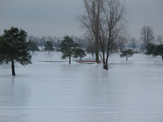 Ice Storm BT GC Ohio Photo 2 by WDWParksGal-Stock