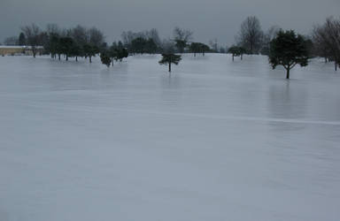 Ice Storm BT GC Ohio Photo 4 by WDWParksGal-Stock