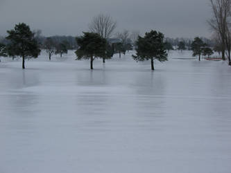 Ice Storm BT GC Ohio Photo 5 by WDWParksGal-Stock