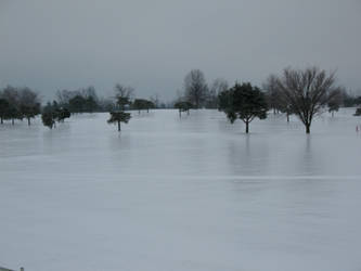 Ice Storm BT GC Ohio Photo 6 by WDWParksGal-Stock