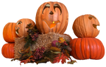 Autumn Leaves and Pumpkins IMG 2918 by WDWParksGal-Stock
