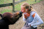 Big Kiss by Vevina-Horse