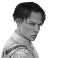 SnK: Rivalle by Anixien