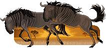 Wildebeests by FennecFoxAim