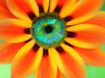 Fleur dans mes yeux by Ebonova