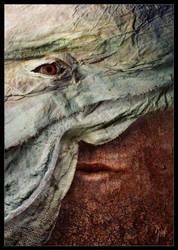 The Veil by MaciejZielinski