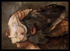 Mothqueen by MaciejZielinski