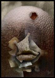 The Mask by MaciejZielinski