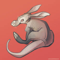 Aardvark by iktis