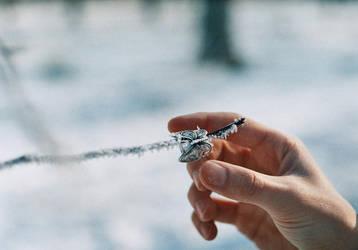 Frozen wings by Scarllet