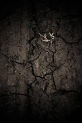 Trees and stars by padika11