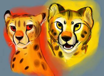 Experimental Art by CheetahFalcon