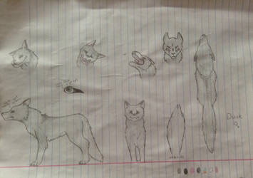 Dusk the Wolf Reference Sheet by Alexadragonfire