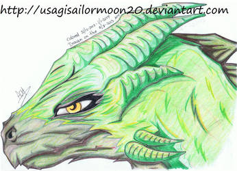 Dragon Head Colored by usagisailormoon20
