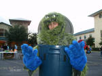 Oscar the Cookie Grouch? by Miss-Marquin