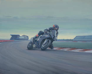 D J Nester at Silverstone. by Pictonart