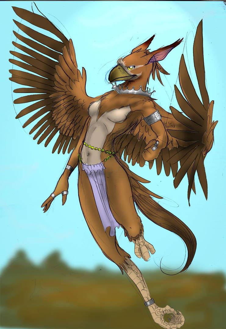 griffin.anthro.form by mafagafa