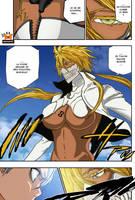 bleach chap339 page12 by Bankai-no-jutsu