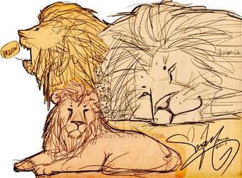 Six lions by Vilva