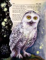 Snowy Owl by TrollGirl